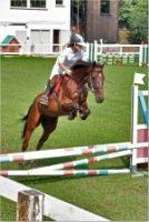 equitazione_2008_003